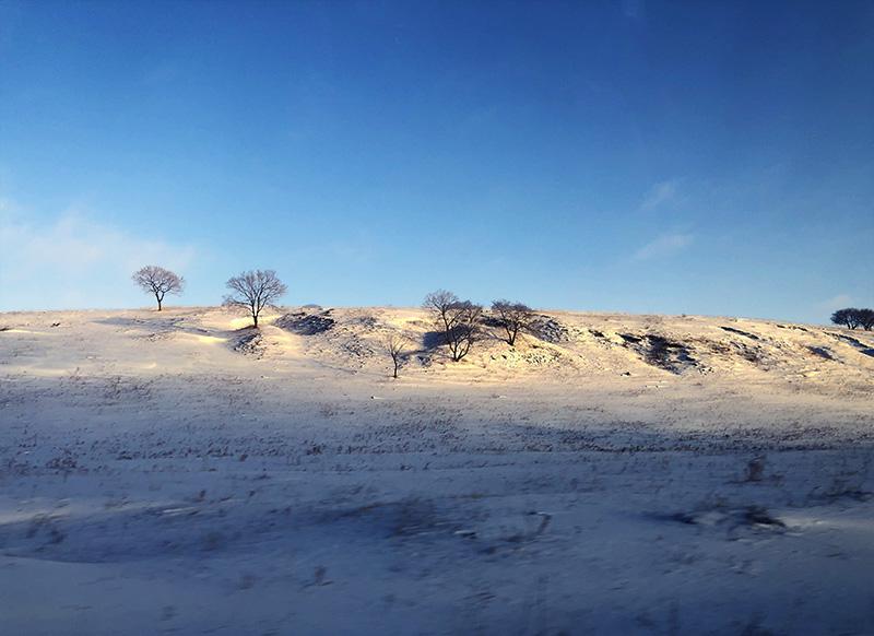 有一种美,叫御道口草原森林风景区的冬天(图文)